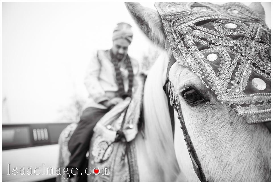 Indian Wedding Toronto_7942.jpg