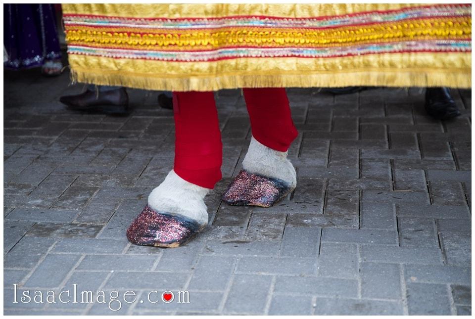 Indian Wedding Toronto_7947.jpg