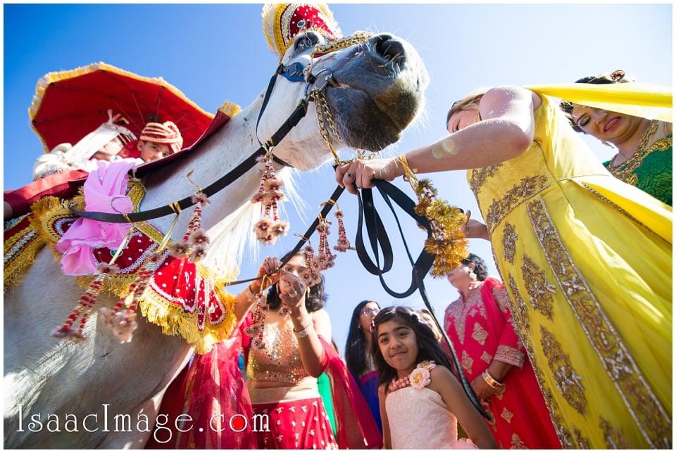 Grand Empire banquet hall Wedding Reema and Parul_1398.jpg
